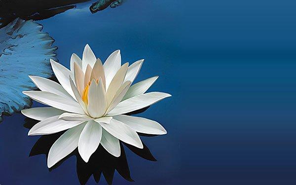 T'RUIH PA XƯL T'NGAY 10-8-2020