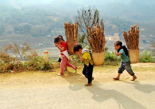 Vì sao trẻ em miền núi Bác Ái hay bỏ học?